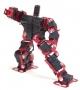 Robotinno 1 人形機械人